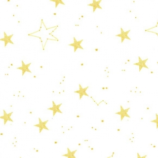 Lucky Stars on Minky - White